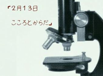 2007y02m18d_004329375.JPG