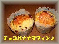 IMGP3303.jpg