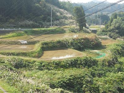 20111014(棚田)