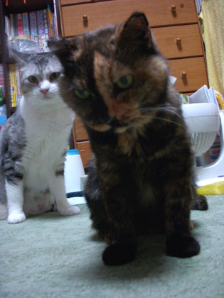 8-13-21-zefu&satsuki.jpg