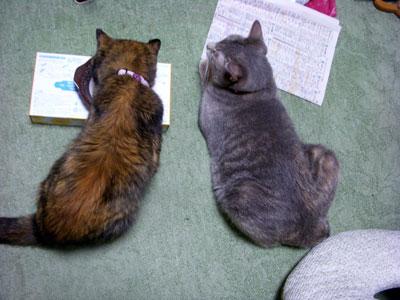 8-15-11-satsuki&maka.jpg