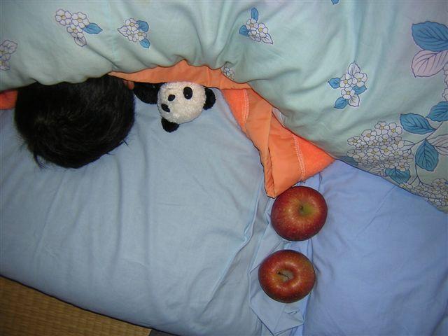 正造・りんご・パンダ