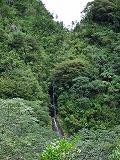 マノアの滝遠景
