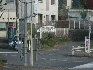 警察信号無視を待っています!.jpg