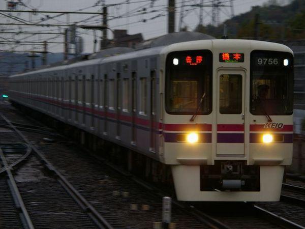 IMGP7594.jpg