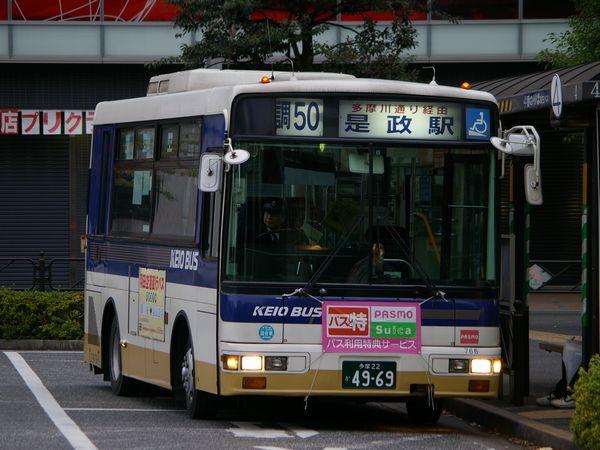 IMGP9509.JPG