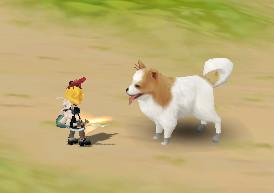 犬より小さい