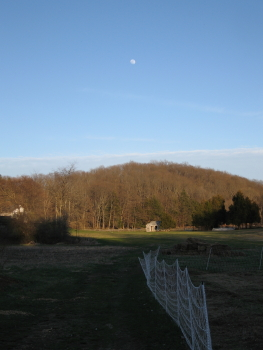 Farm and moon