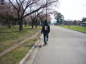 2009.04.19.5.jpg