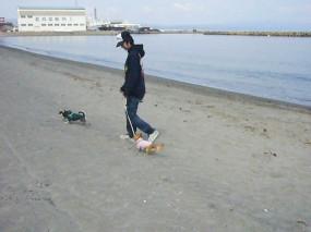 2009.04.19.6.jpg