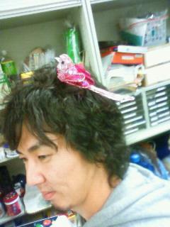 安田さん鳥
