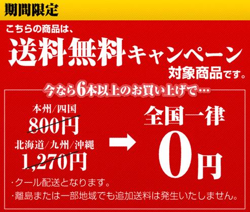 6本送料無料.jpg