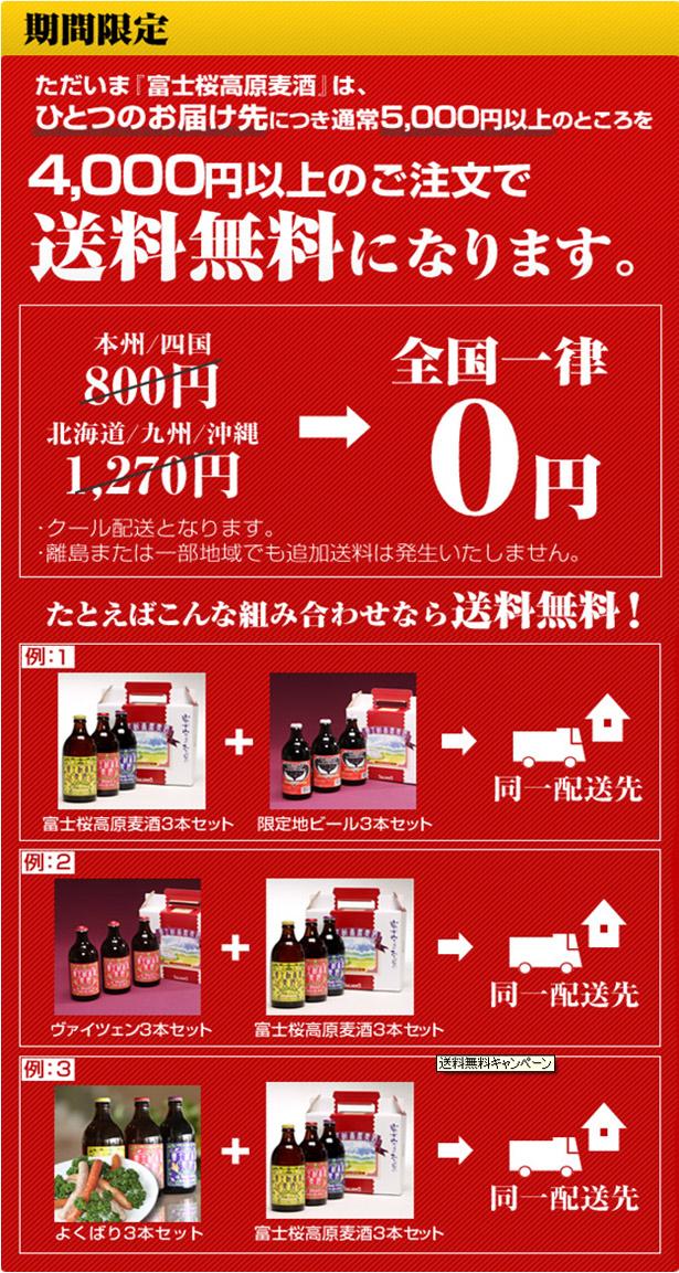 送料無料¥4000以上.jpg