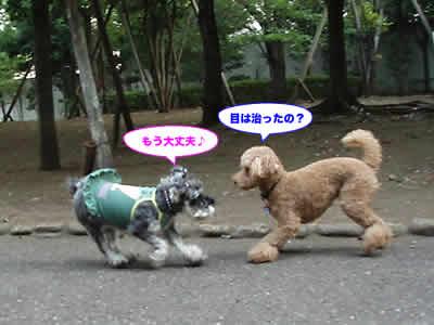 20070825__3.jpg