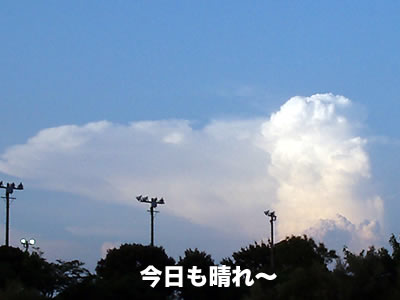 20070815_1.jpg