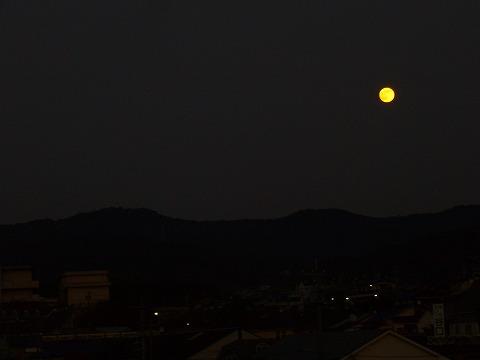お月さん。
