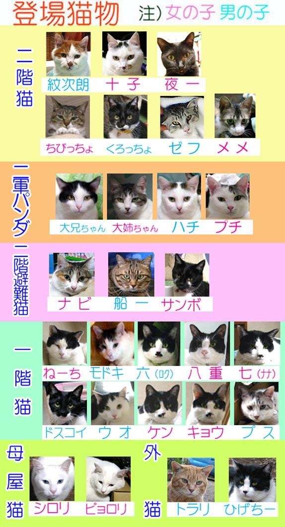 07-10登場猫物(標準).jpg