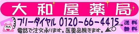 大和屋ロゴ 01
