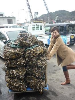 ぴよさんと牡蠣の山