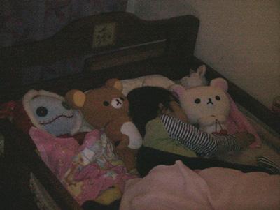 ひなさん、ぬいぐるみ達と寝る~の巻