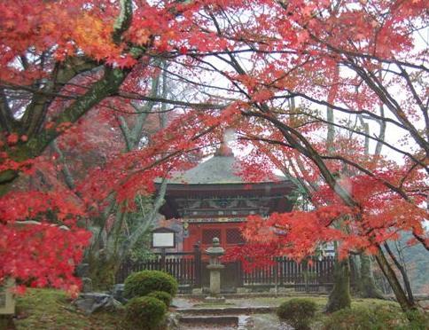 滋賀2008 11.24 106.jpg