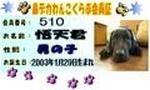 144151_1146204241.jpg