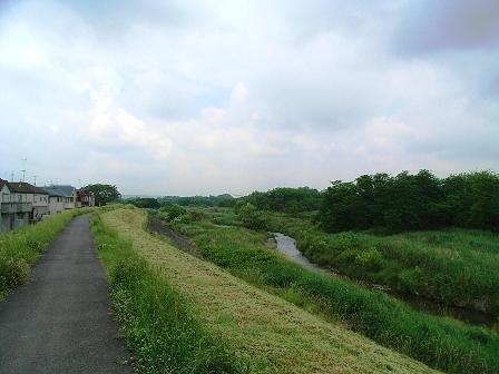 2007_0601多摩サイ右.JPG