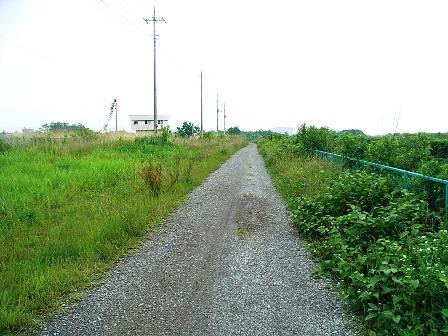 2007_0601多摩サイ右2.JPG