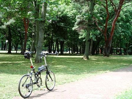 2007_0528野川公園6.JPG