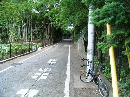 2007_0528はけの道7.JPG