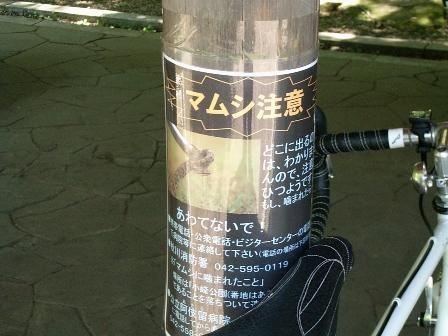 2007_0521公園にて3.JPG