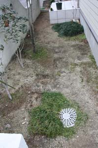2.8玄関前庭2.jpg