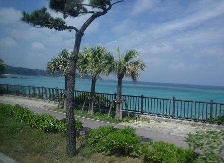 沖縄  1.jpg