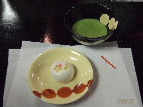 2008_04100009.JPG