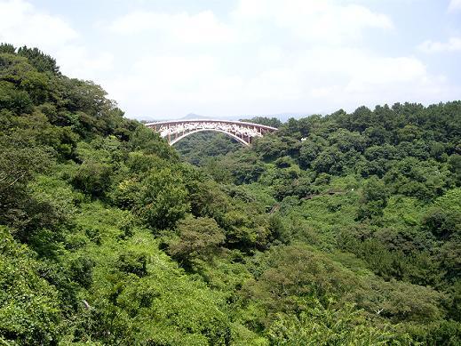白い橋1.JPG