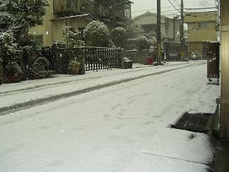 2008.2.9....雪.JPG