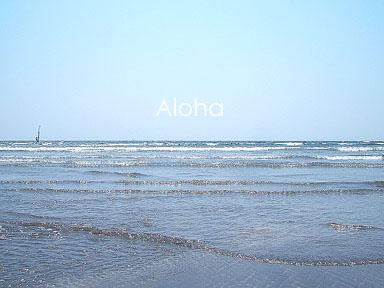 誰もいない浜辺~♪