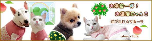 猫も着れる可愛犬服一杯,お洒落にゃんこの秘訣