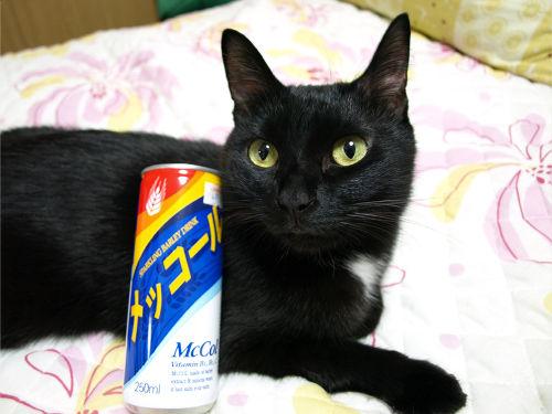 韓国の麦コーラ「メッコール」 20年以上前にチョー・ヨンピルがCMやってましたよね? ポスターを覚えています。  10年くらい前まで福岡市内のあちこちで自販機を ...