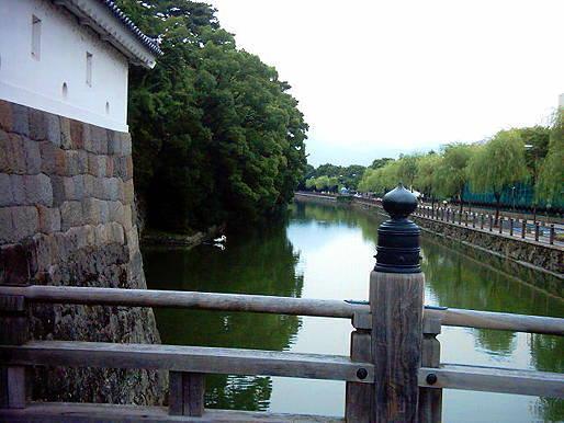 sizuoka2.jpg