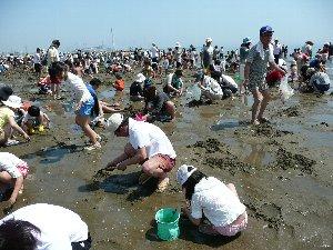 潮干狩り 2008.jpg