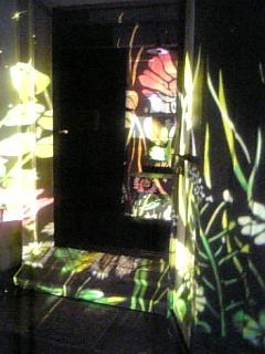 2009-08-04 20:23:58