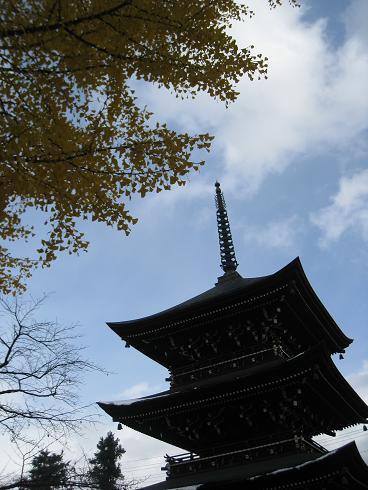 国分寺の銀杏の木 塔と銀杏の木
