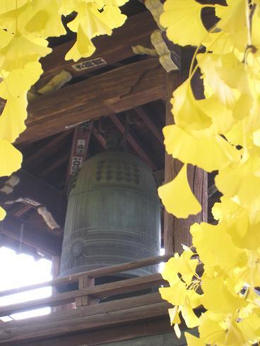 吊り鐘と銀杏
