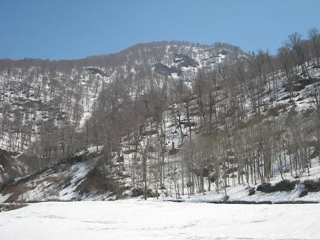 最下流から見える山.JPG