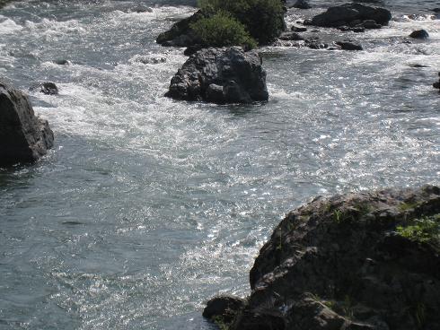 6月の宮川