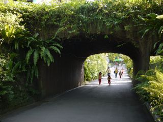 台北動物園4.jpg