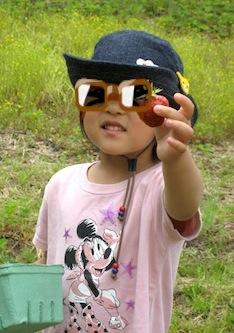 イチゴ狩り2010