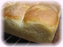 自家製酵母で焼いたパン♪