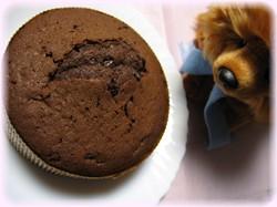 ダブルチョコレートケーキ作ったよ♪
